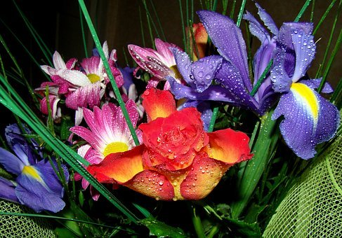 Flowers, Bouquet, Many Colors, Beautiful Flowers, Rose