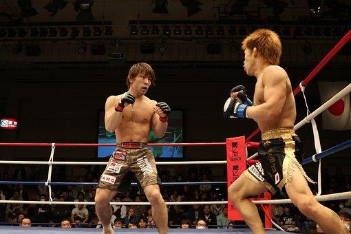 Mma, Mixed Martial Arts, Japan, Maza Fight, Shooto