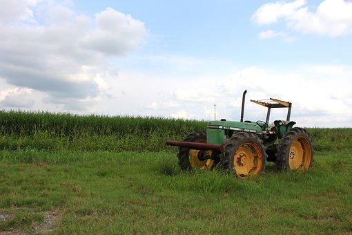 Tractor, Field, Farm, Farmer, Farming, Agriculture