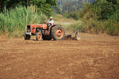 Agriculture, Cultivating, Cultivation, Driving, Farm