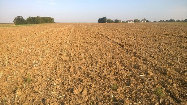 Field, Ploughed, Suffolk, Soil, Crop, Farm, Sky, Vista