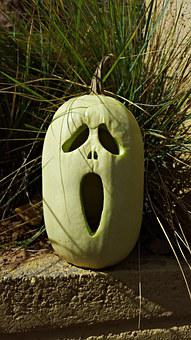Pumpkin, October, Halloween, Holiday, Autumn, Fall