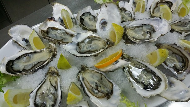 Oysters, Haute Cuisine, Food