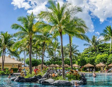 Pool, Resort, Tropical, Palm Trees, Sky, Clouds, Summer
