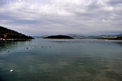 Mussel Farm, Oysters, Mussels, Ston, Peljesac Peninsula