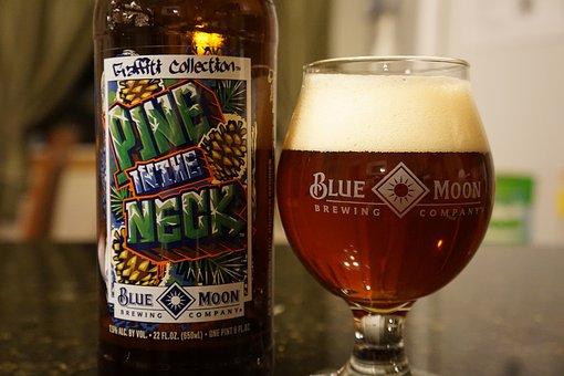 Beer, Hops, Blue Moon, Snifter Glass, Craft Beer, Ipa