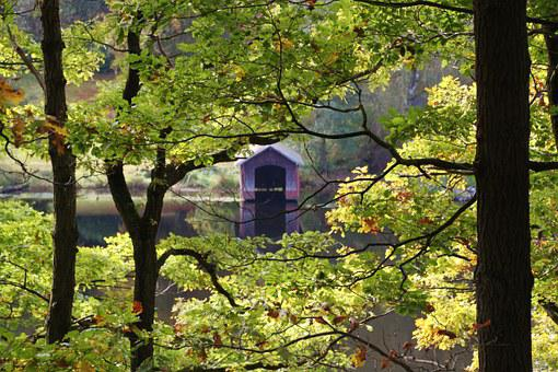 Lake, Waters, Boat House, Beech Leaves, Leaves, Autumn
