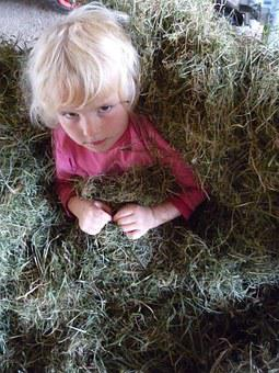 Child, Hay, Straw, Face, Blond, Country Life, Harvest