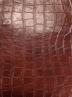 Skin, Snake Skin, Texture, Background, Leatherette