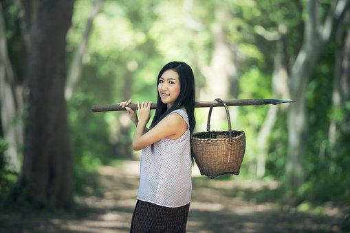 Countryside, Basket, Asia, Background, Pretty, Beauty