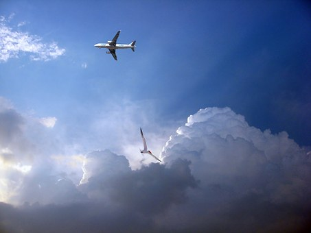 Plane, Aviation, Airport, Trip, Aeronautics, Fly
