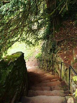 Steps, Stairs, Stone, Stairway, Way, Wall, Rail, Yew
