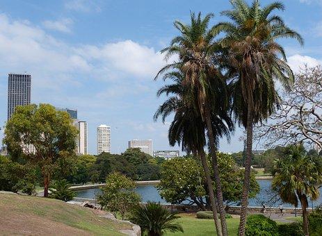 Sydney, Australia, Botanical Garden, Park, Botanical