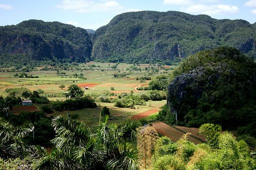 Viñales Valley, Cuba, Landscape, Nature, Plant, Trees