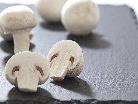 Mushrooms, Meadow, Delicious, Healthy, White, Frisch