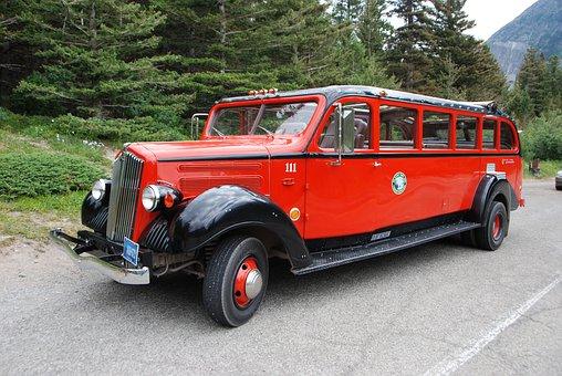Bus, Jammer, Tour, Transportation