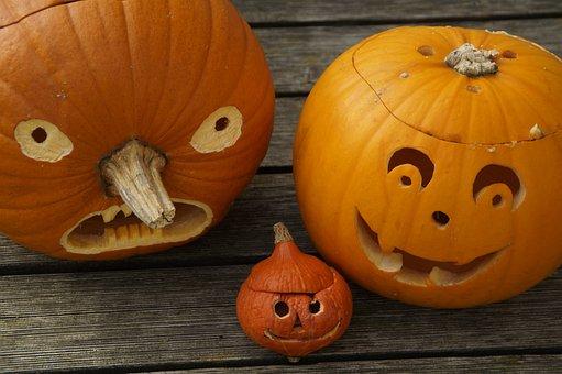 Pumpkins, Three, Halloween, Family, Cheeky, Autumn