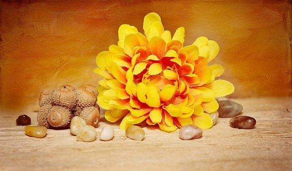 Flower, Blossom, Bloom, Yellow, Plastic Flower