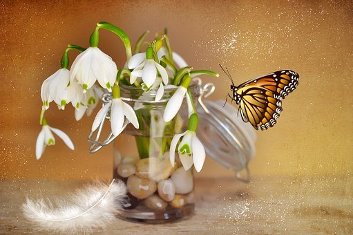 Lily Of The Valley, Snowdrop, Decorative Glass, Glass