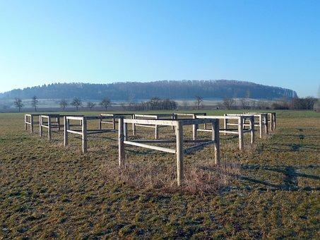 Equestrian, Obstacle, Hurdle, Tournament Ride