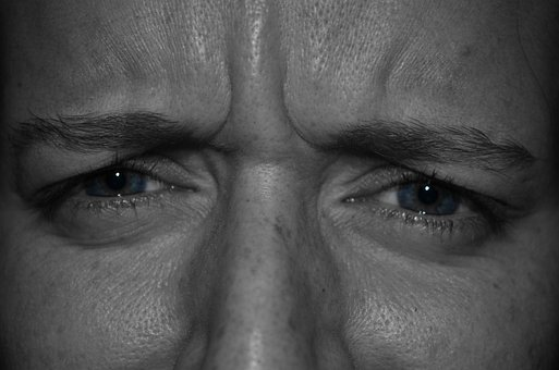 Eyes, Face, Eyelashes, Eyebrows, Expression, Close-up