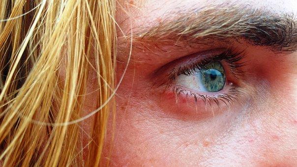 Eye, Eyebrow, Sight, Vision, Eyelashes, Look, View
