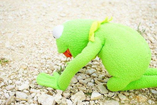 Kermit, Frog, Hunger, Breakfast, Poppy, Klatschmohn