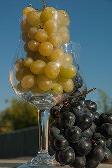 White Grape, Black Grape, Glass, Harvest, Wine