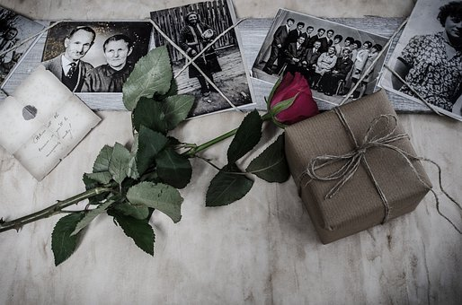 Picture, Pictures, Memories, Flower, History, Rose