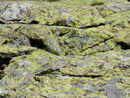 Stone, Lichen, Rock Lichen, Rock, Fouling