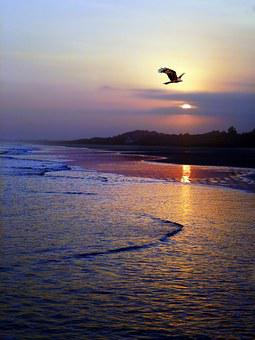 West, Sunset, Against Light, Landscape, Nature, Sky