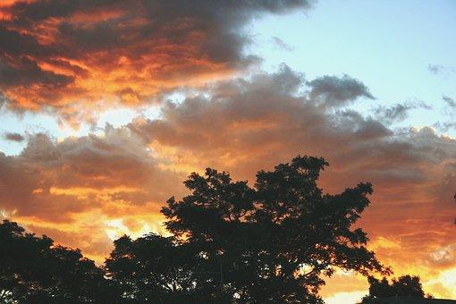 Sunset, Clouds, Soft Orange, Yellow, Silhouette