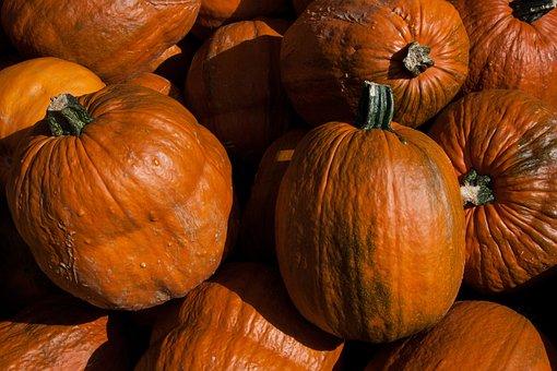 Pumpkins, Cucurbita, Cucurbitaceae, Cucurbita Maxima