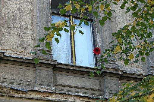 Window, Old Window, House, Facade, Building