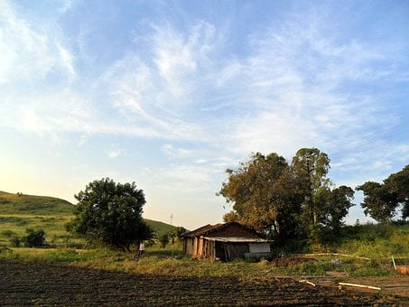 Indian, Villages, Houses, Homes, Buildings, Huts, Flora