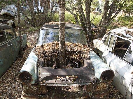 Car, Scrap, Moss, Old, Forest, Rust, Green, Rusty
