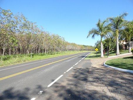 Road, Highway, Path, Asphalt, Paving, Tree, Sky, Lane
