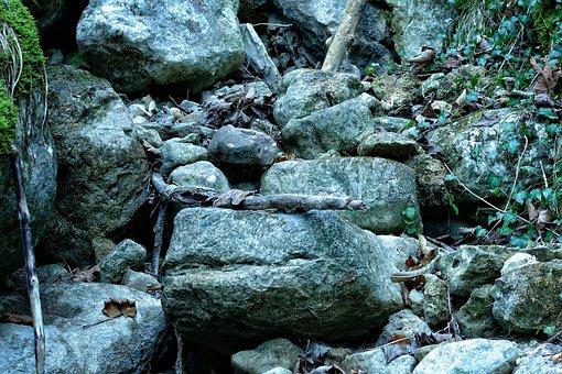 Scree, Rock, Stones, Rocks, Underground, Steinig
