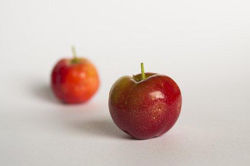 Red Fruit, Fruit, Frutas, Frutas Vermelhas, Verde