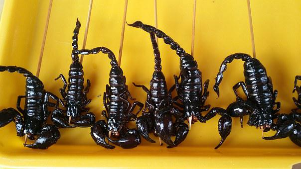 Food, China, Scorpion, Chinese, Snack, Appetizer
