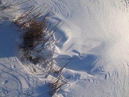 Snow, Traces, Drift, Winter Mood, Pattern