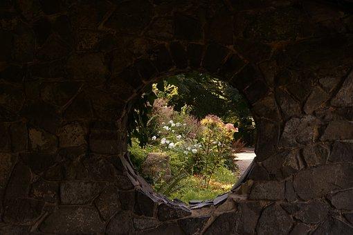 Wall, By Looking, Flowers, Stone, Window