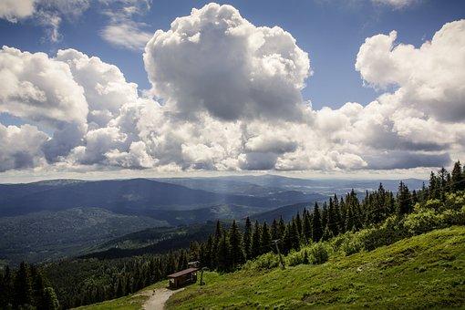 Mountain, Mountains, Bavarian Forest, Summit, Rock