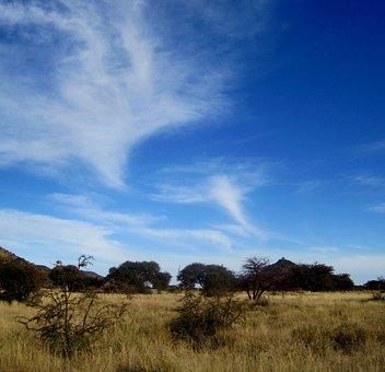 Big Blue Sky, Clouds, Whispy, White, Swirly, Smokey