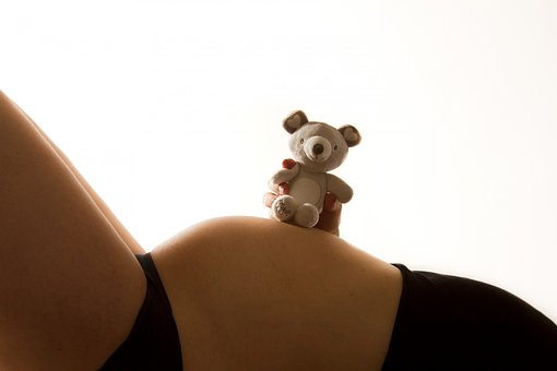 Baby, Bump, Pregnant, Pregnancy, Teddy, Toy, Child