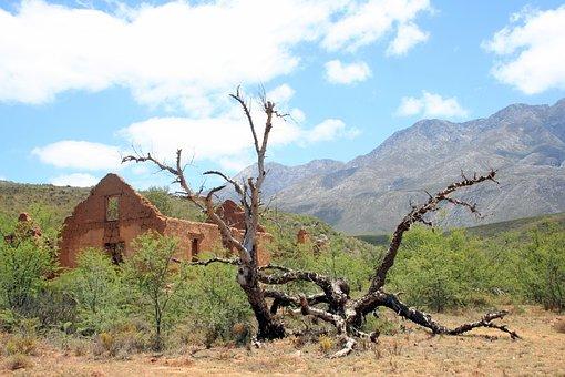 Ruin, Deadwood, Isolation, Karoo, Mountain, Cape