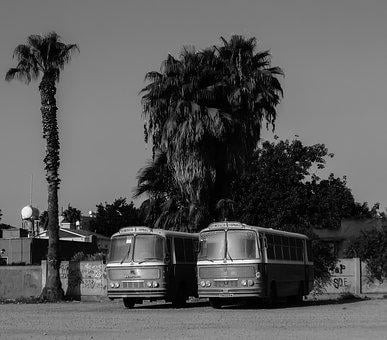 Buses, Old, Vintage, City, Vehicle, Car, Urban