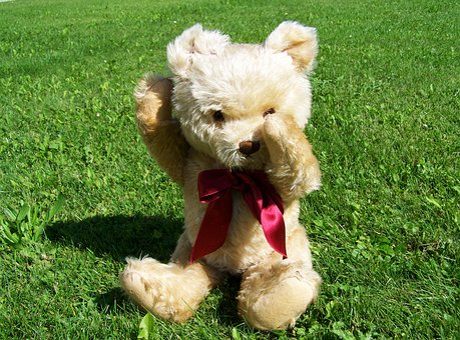 Teddy Bear, Child's Play, Colored Buns