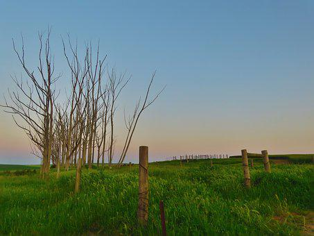Countryside, Fence, Sky, Country, Nature, Rural
