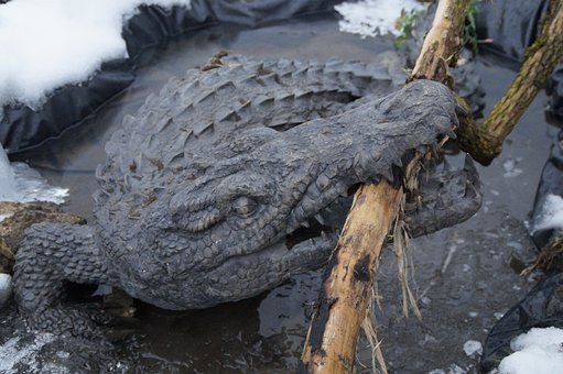 Crocodile, Alligator, Tooth, Snap, Bite, Dangerous